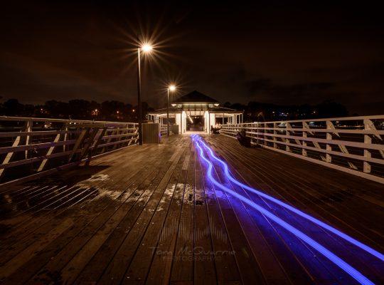 Neon Serendipity